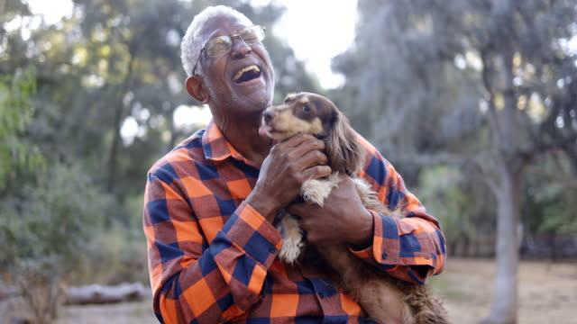 vídeos y material grabado en eventos de stock de senior black man with long haired dachshund - un solo hombre