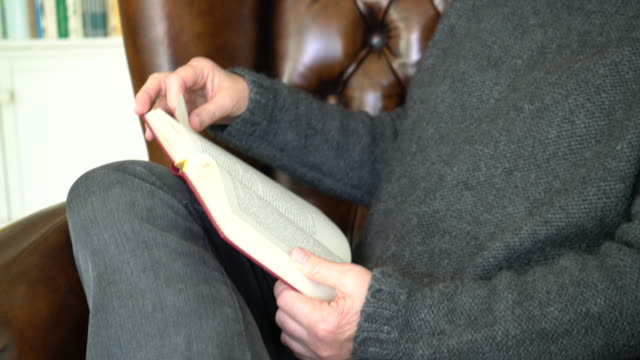 senior caucasian woman reading a book on armchair - 70 79 years stock videos and b-roll footage
