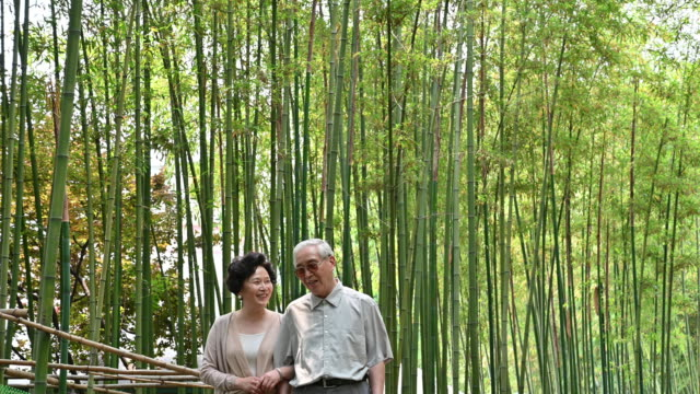 senior chinese couple walking through bamboo grove - life balance stock videos & royalty-free footage