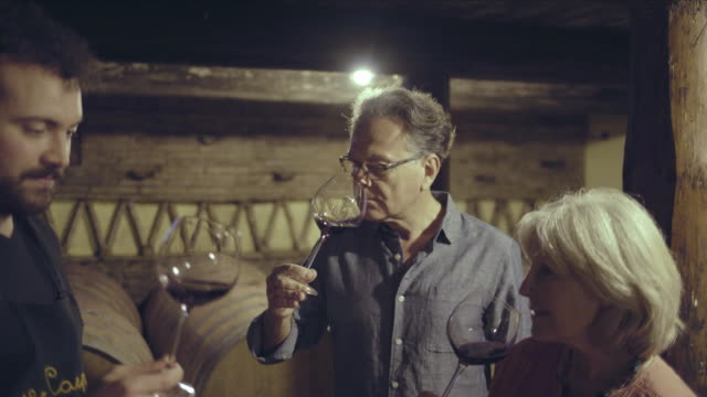 senior couple at a wine tasting in wine cellar - toskana stock-videos und b-roll-filmmaterial