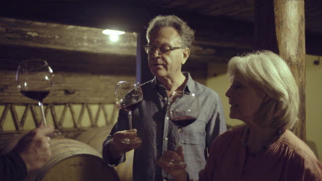 senior couple at a wine tasting in wine cellar - tourism stock videos & royalty-free footage