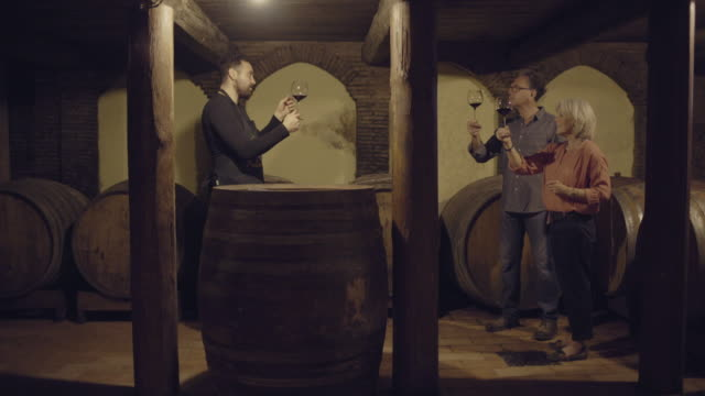 senior couple at a wine tasting - tasting stock videos & royalty-free footage