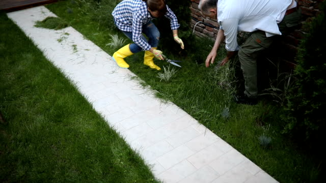 senior couple cutting grass with scissors - gardening glove stock videos & royalty-free footage