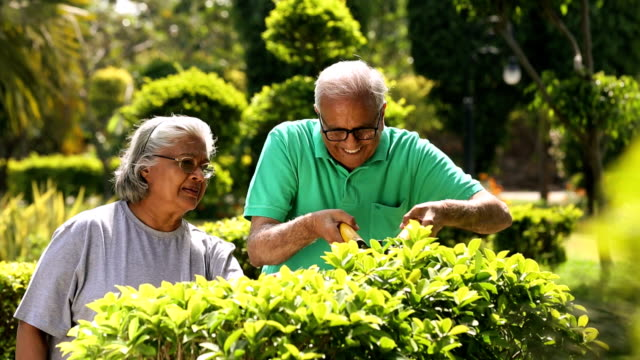 Senior couple cutting plant with scissors, Delhi, India