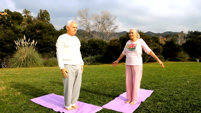 WS Senior couple doing yoga, performing warrior stance and prayer pose / Los Angeles, California, USA