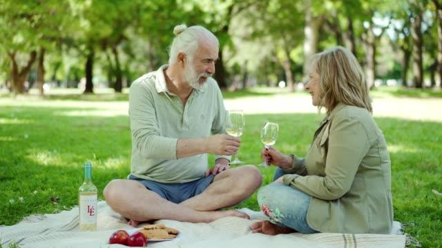 vídeos de stock e filmes b-roll de senior couple enjoying a glass of wine on picnic - aniversário especial