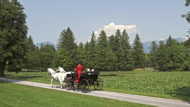 stockvideo's en b-roll-footage met luchtfoto senior paar genieten van paard en wagen rijden rond een meer - paard en wagen