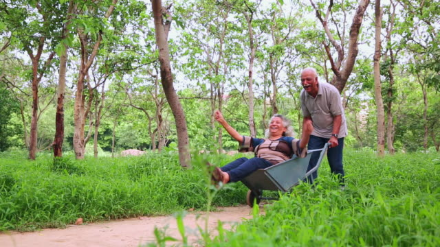 senior couple enjoying in the park, delhi, india - wheelbarrow stock videos and b-roll footage