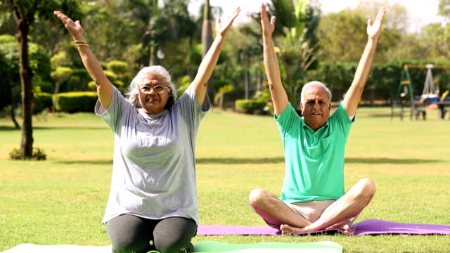 senior couple exercising in the park, delhi, india - active seniors stock videos & royalty-free footage