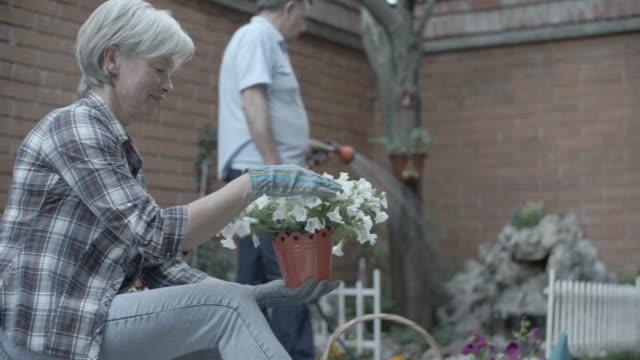 vidéos et rushes de hd:  couple âgé jardinage ensemble. - femmes d'âge mûr