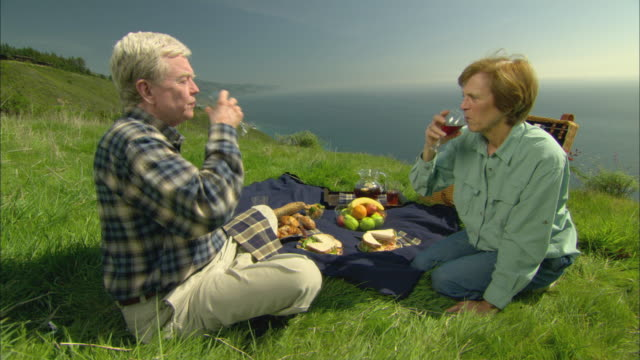 ms, cu, senior couple having picnic on coastal mountain slope, toasting with wine and kissing, big sur, california, usa - alm stock-videos und b-roll-filmmaterial