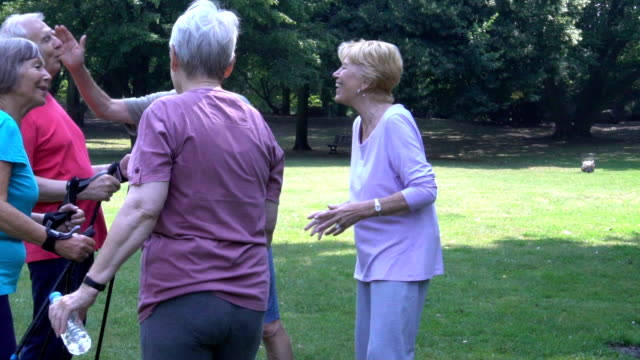 senior couple holding hiking poles while communicating with friends - racewalking stock videos and b-roll footage