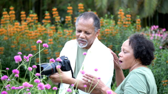 senior couple in park, photographing flowers - 60 69 years stock videos & royalty-free footage