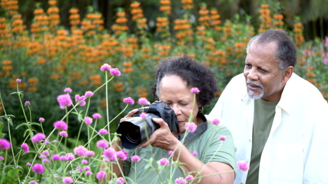 vídeos y material grabado en eventos de stock de pareja mayor en el parque, fotografiando flores - 60 69 años