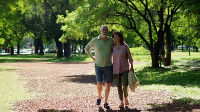 senior couple in pleasant walk in a park - beautiful people stock videos & royalty-free footage