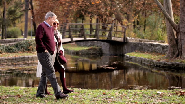 senior couple in the park - mature couple stock videos & royalty-free footage