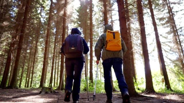 vídeos y material grabado en eventos de stock de pareja mayor está haciendo senderismo en el bosque - evasión