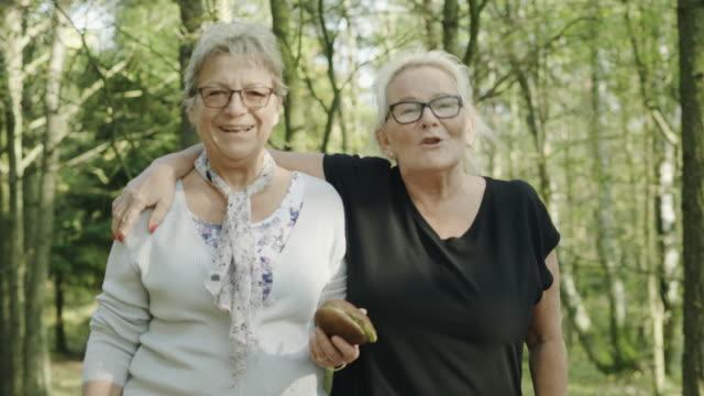 senior paar auf der suche nach essbaren pilze im wald - pilz stock-videos und b-roll-filmmaterial