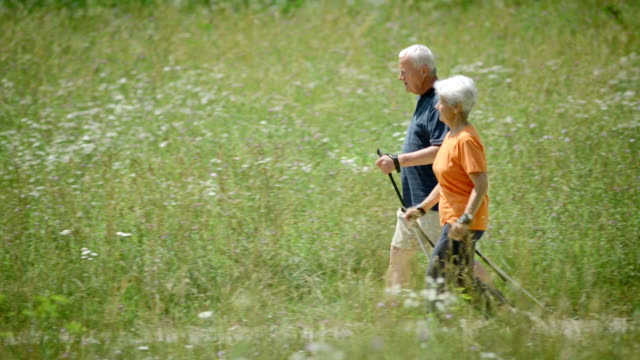 HD: Senior Couple Nordic Walking In Countryside