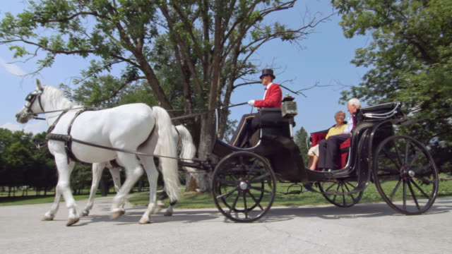 DS Senior couple on a carriage ride through a park
