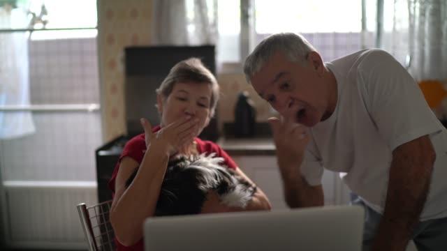 vídeos de stock, filmes e b-roll de casal de idosos em um vídeo chamando usando laptop em casa - isolado