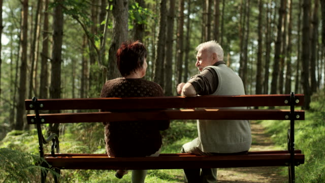 senior couple on park bench - bench stock videos and b-roll footage