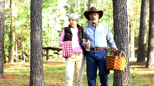 senior couple out for a picnic - picnic table stock videos & royalty-free footage