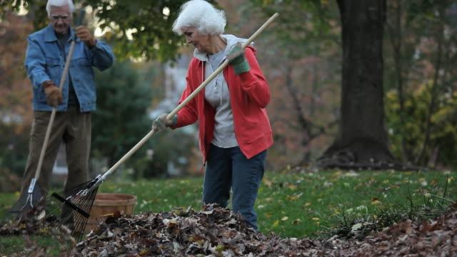 ms tu pan senior couple raking leaves in back yard / richmond, virginia, usa - trädgårdshandske bildbanksvideor och videomaterial från bakom kulisserna