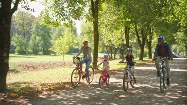 senior couple riding bikes in the sunny parks with their grandchildren - cycling stock videos & royalty-free footage