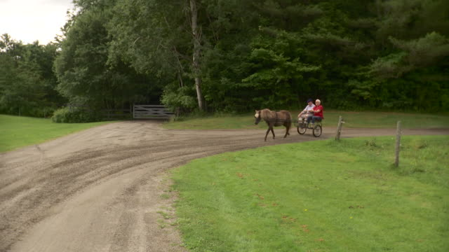 WS ZI TS Senior couple riding on horse drawn carriage in farm / Stowe, Vermont, USA