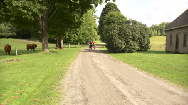 ws senior couple riding on horse drawn carriage on dirt track / stowe, vermont, usa - stowe vermont stock videos & royalty-free footage