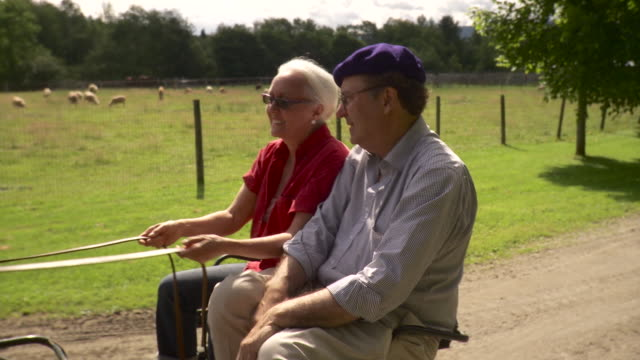 ms td senior couple riding on horse drawn carriage on dirt track / stowe, vermont, usa - stowe vermont stock videos & royalty-free footage