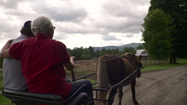 MS  Senior couple riding on horse drawn carriage on dirt track / Stowe, Vermont, USA
