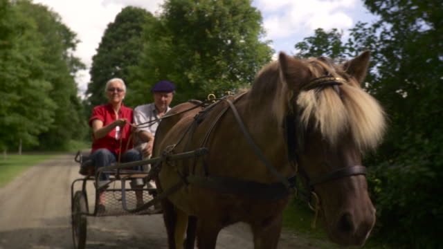 ms senior couple riding on horse drawn carriage / stowe, vermont, usa - stowe vermont stock videos & royalty-free footage