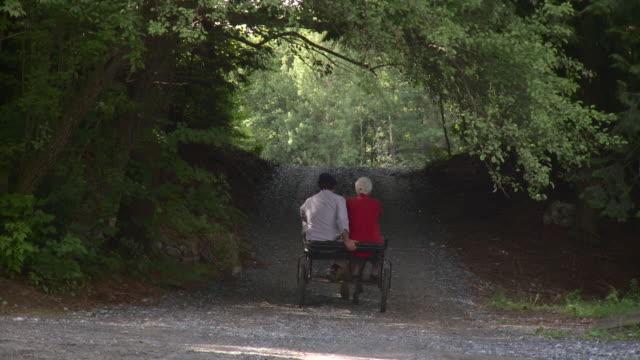 ws senior couple riding on horse drawn carriage / stowe, vermont, usa  - stowe vermont stock videos & royalty-free footage