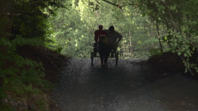 ws pan senior couple riding on horse drawn carriage / stowe, vermont, usa  - horse cart stock videos & royalty-free footage