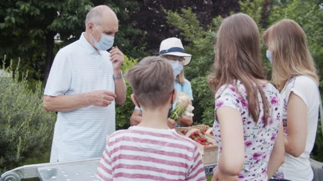 vídeos de stock e filmes b-roll de senior couple selling groceries during covid-19 pandemic - mercado de produtos agrícolas