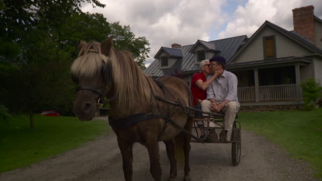 ws senior couple sitting on horse drawn carriage, woman kissing man / stowe, vermont, usa - stowe vermont stock videos & royalty-free footage
