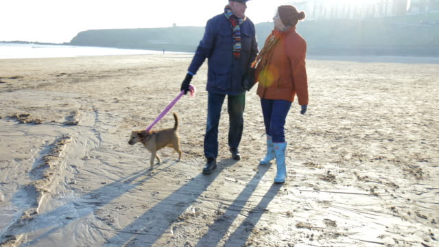senior couple walking along the beach with the dog - retirement stock videos & royalty-free footage
