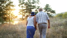 Senior couple walking together in nature