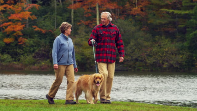 MS PAN TD TU Senior couple walking with Golden Retriever dog along lake, Manchester, Vermont, USA