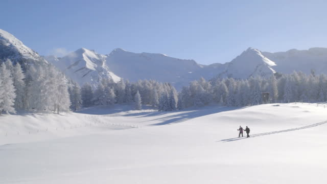 Senior couple walking with ski pole in snow during winter