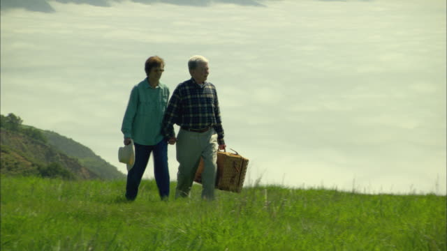 ws, senior couple with picnic basket walking in mountain landscape, big sur, california, usa - picnic basket stock videos and b-roll footage
