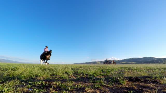 vídeos de stock e filmes b-roll de senior cowboy on horseback - cavalgada de lazer