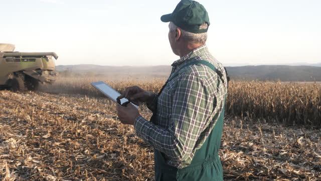 vídeos de stock e filmes b-roll de senior farmer manages harvesting and using a digital tablet. - cena não urbana