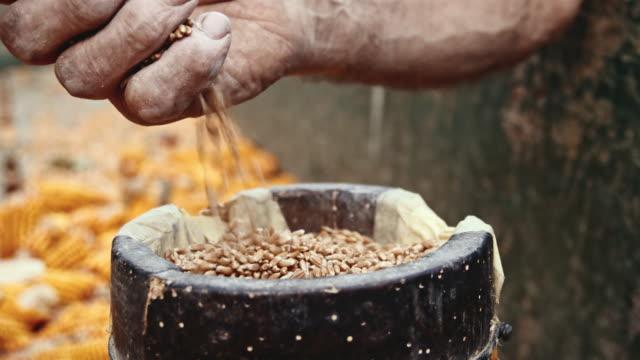 SLO-MO-Senior Bauer Weizenkörner gießen