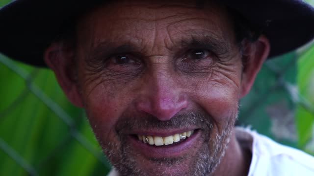 senior farmer/countryside man - farm worker stock videos & royalty-free footage