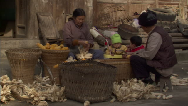 ms senior farmers tearing corn from husks and shucking kernels into baskets, baiman village, sichuan, china - husking stock videos & royalty-free footage
