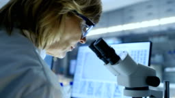 Senior Female Biologist Works on Her Computer and Looks at Materials under Microscope. She's in a Modern Laboratory.