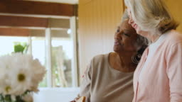 Senior female friends toasting wineglasses at home
